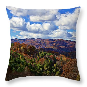 Late Autumn Beauty Throw Pillow