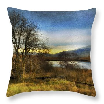 Snowdonia Autumn Lake Throw Pillow