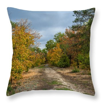 Late Autumn Throw Pillow by Svetlana Sewell