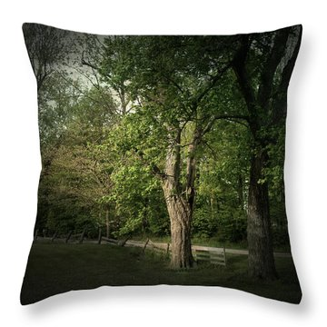 Late Day Drive Throw Pillow by Cynthia Lassiter