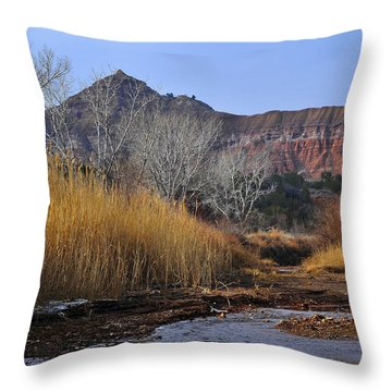 Late Fall In Palo Duro Canyon Throw Pillow by Karen Slagle