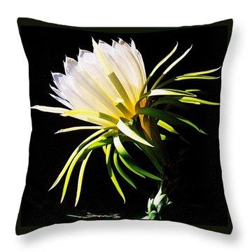 Desert Beauty Throw Pillow by Mistys DesertSerenity