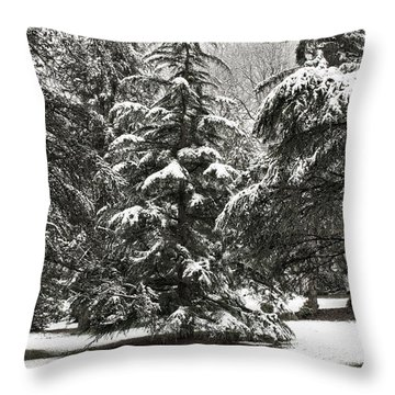 Throw Pillow featuring the photograph Late Season Snow At The Park by Gary Slawsky