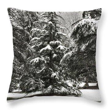Late Season Snow At The Park Throw Pillow by Gary Slawsky