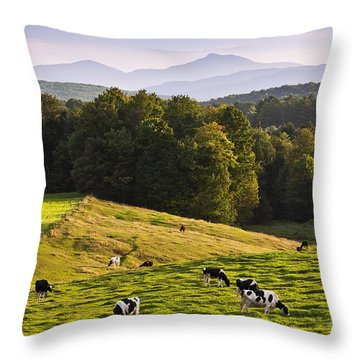 Late Summer Countryside Throw Pillow