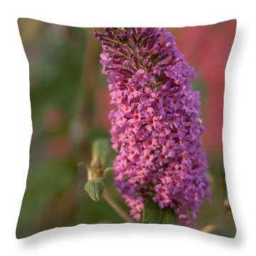 Late Summer Wildflowers Throw Pillow by Miguel Winterpacht