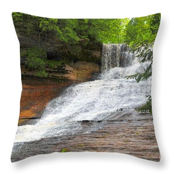 Laughing Whitefish Waterfall Throw Pillow by Terri Gostola