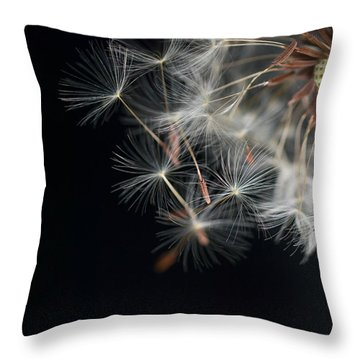 Launch Bay Open Throw Pillow