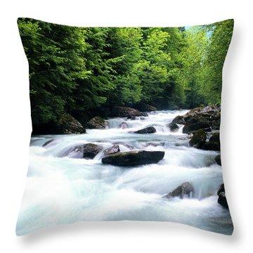 Lauterbrunnen River Throw Pillow