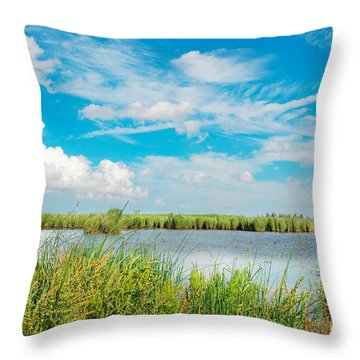 Lauwersmeer National Park. Throw Pillow