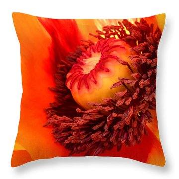 Lava Flow Throw Pillow by Connie Handscomb
