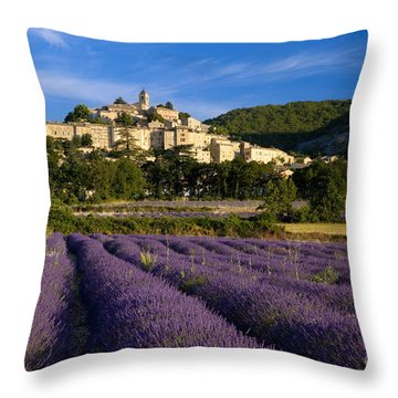 Lavender And Banon Throw Pillow by Brian Jannsen