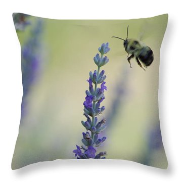 Lavender And The Bee Throw Pillow