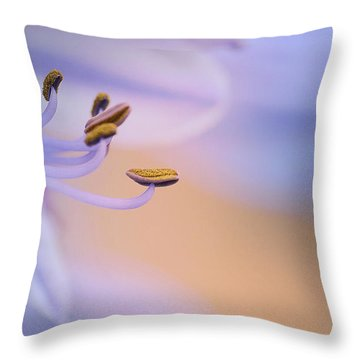 Lavender Dream 2 Throw Pillow by Fraida Gutovich