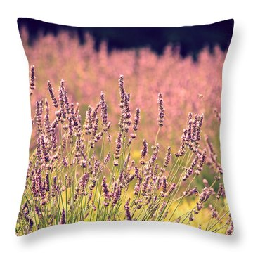 Throw Pillow featuring the photograph Lavender Dreams by Lynn Sprowl