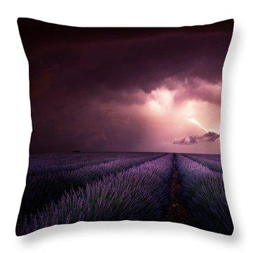 Provence France Throw Pillows