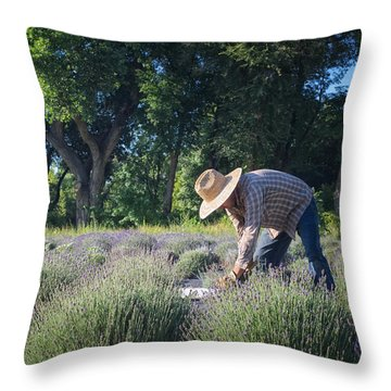 Throw Pillow featuring the photograph Lavender Harvest by Mary Lee Dereske