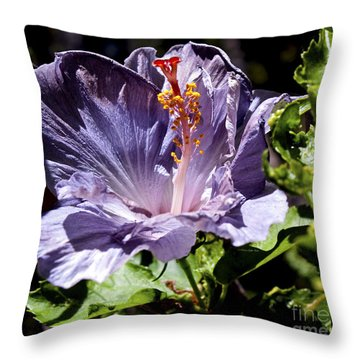 Lavender Hibiscus Throw Pillow