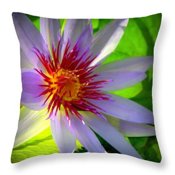 Lavender Passion Throw Pillow by Karen Wiles