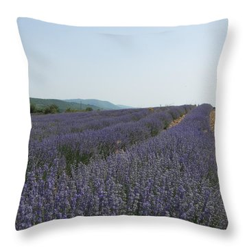 Throw Pillow featuring the photograph Lavender Sky by Pema Hou