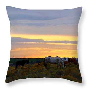Throw Pillow featuring the photograph Lavender Sunrise by Lynn Hopwood