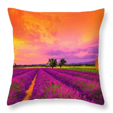 Lavender Sunset Throw Pillow
