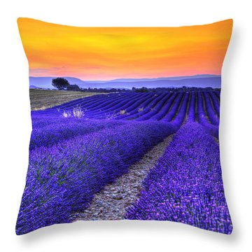 Lavender's Sunset Throw Pillow by Midori Chan