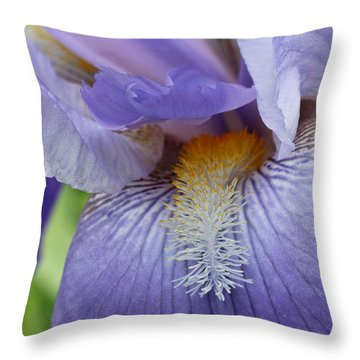 Lavish Iris Throw Pillow
