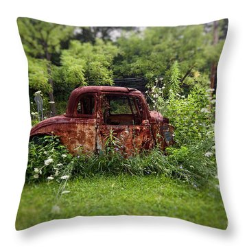 Lawn Ornament Throw Pillow
