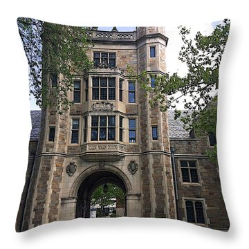 Lawyer's Prison Throw Pillow
