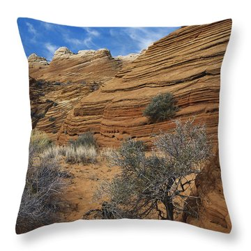 Layered Sandstone Throw Pillow