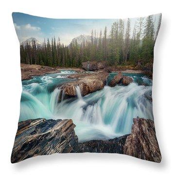 Rockies Throw Pillows