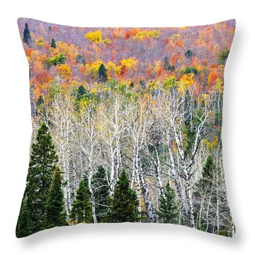 Layers Of Autumn Throw Pillow by Mary Amerman