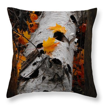 Laying Birch Throw Pillow