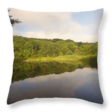 Throw Pillow featuring the photograph Lazy Afternoon by Michael Porchik