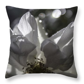 Lazy Afternoon White Rose Throw Pillow