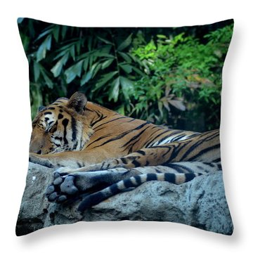 Lazy Cat Throw Pillow by Michelle Meenawong