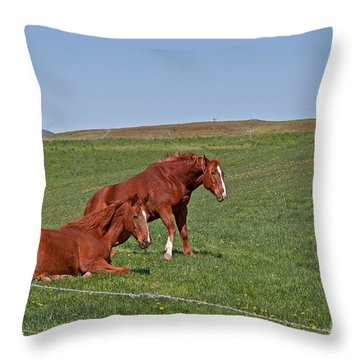 Lazy Horses Throw Pillow by Valerie Garner