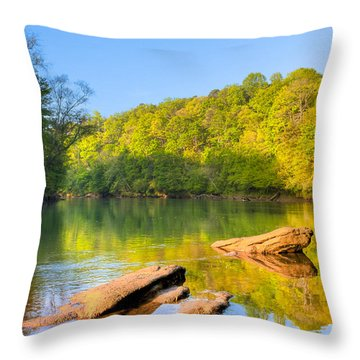 Lazy Morning On The Chattahoochee River Throw Pillow by Mark E Tisdale