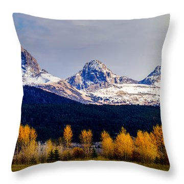 Le Trois Tetons Throw Pillow