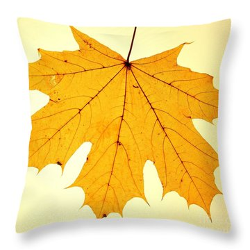 Throw Pillow featuring the photograph Leaf 2 by Mariusz Czajkowski