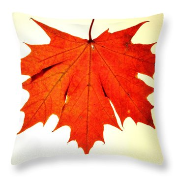 Throw Pillow featuring the photograph Leaf 3 by Mariusz Czajkowski