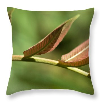 Leaf Bridge Throw Pillow