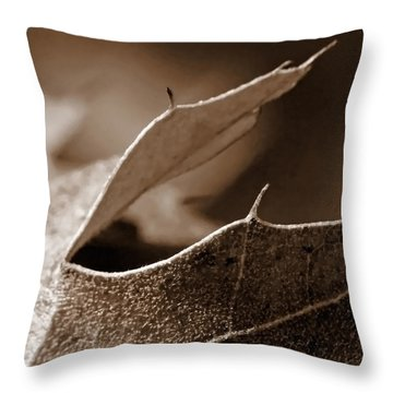 Throw Pillow featuring the photograph Leaf Collage 2 by Lauren Radke