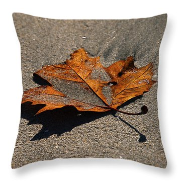 Throw Pillow featuring the photograph Leaf Composed by Joe Schofield