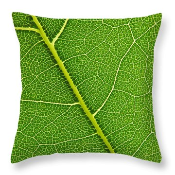Leaf Detail Throw Pillow by Carsten Reisinger