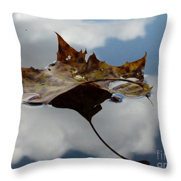 Leaf In Sky Throw Pillow