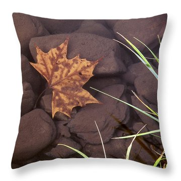 Leaf In The Mountain Fork River Throw Pillow