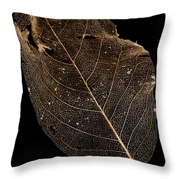 Leaf Lace Throw Pillow by Anne Gilbert