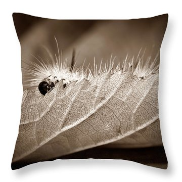 Leaf Muncher Throw Pillow by Luke Moore
